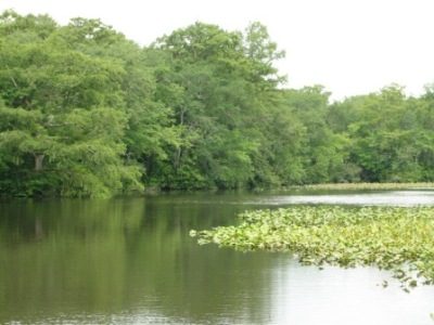 maryland freshwater fishing