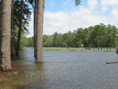 hurricane irene flooding
